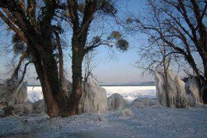 Neuenburgersee im Winter
