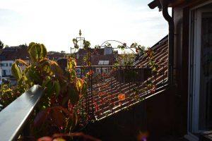 Balkon in Basel