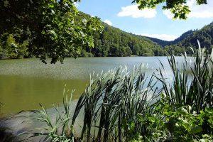 Lac de Lucelle, l'étang de Lucelle
