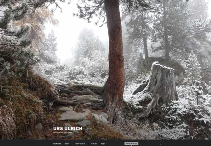 Website Urs Ulrich