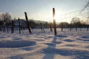 Schnee im Jura
