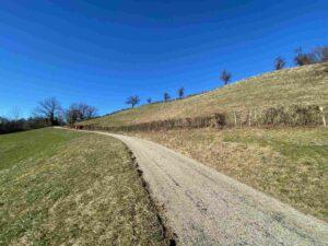 Wanderweg, Oberbaselbiet, Wittlinsburg